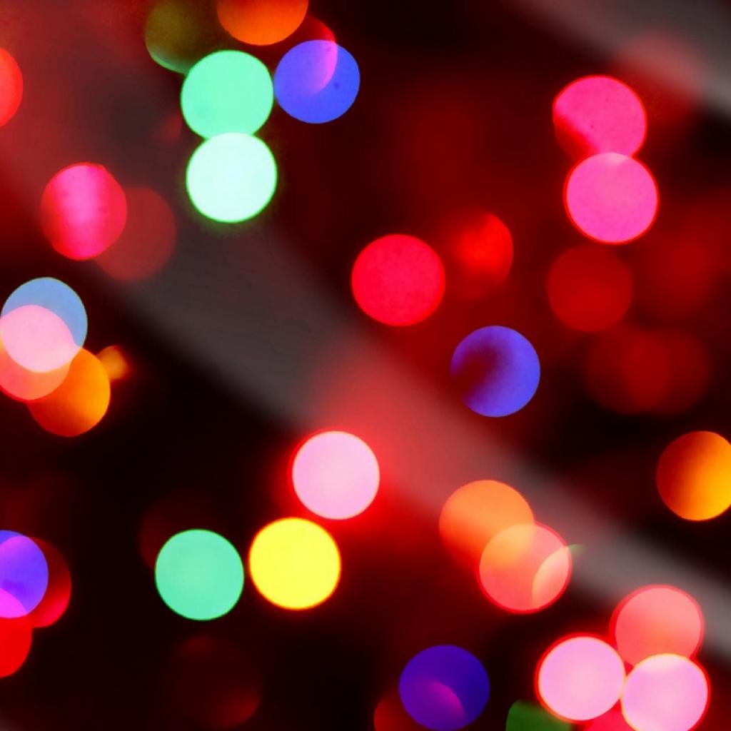 DIABP SALE & Christmas party: December 14